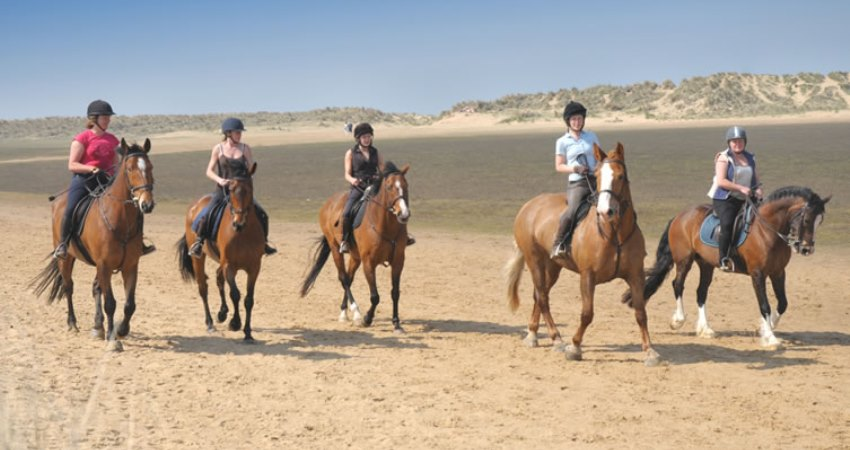 Horse Riding In Norfolk